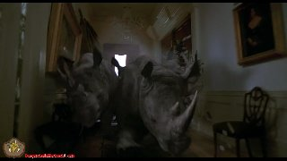 Jumanji Rhino