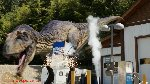 Primeval New World Albertosaurus Shadowlord Inc....